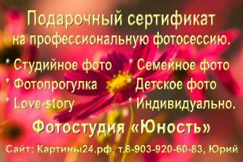 Подарочный сертификат на фотосессию Красноярск