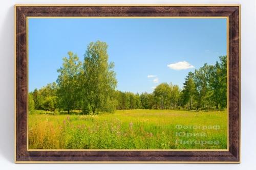 Продаётся фотокартина- Летняя полянка